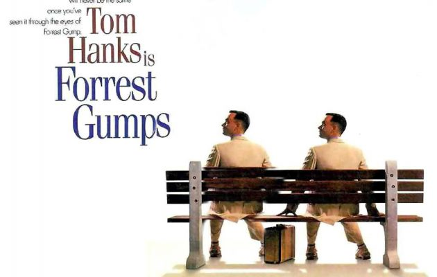 forest-forest-forrest-gump-1216093_1024_768