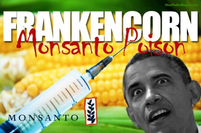 obama-signs-monsanto-protection-act-gmo-corn-frankenfood